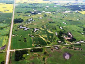 Newdale Representative Landscape Aerial View