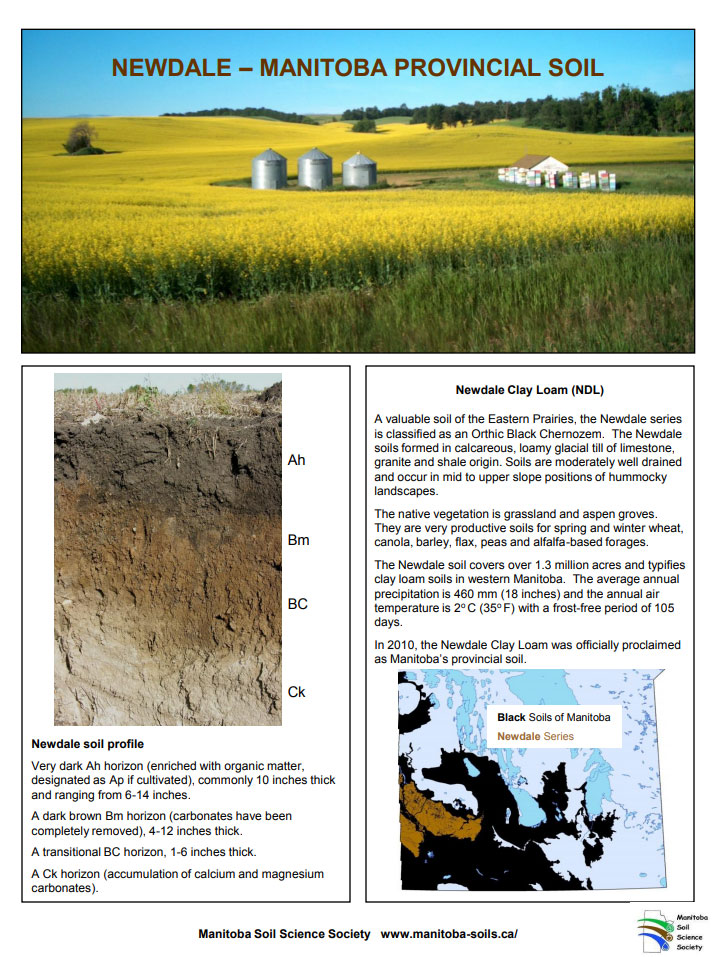Newdale Clay Loam Provincial Soil Factsheet