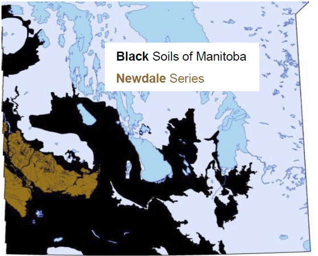 Extent of Newdale Clay Loam in Manitoba