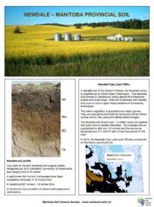 Newdale Clay Loam Provincial Soil Factsheet